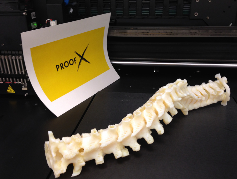 A 3-D printed spine will be among the plastic parts shown at ProofX's lab for Chicago Ideas Week 2014. Photo by Michael Epstein.